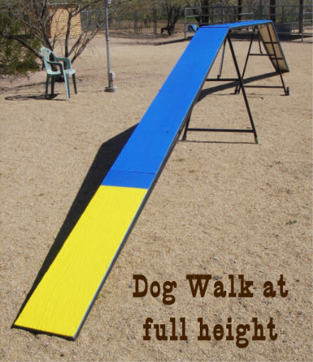 Agility Dog Walk The Dog Walk is Easily Lowered