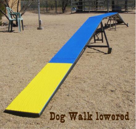 Agility Dog Walk The Dog Walk is Easily Lowered